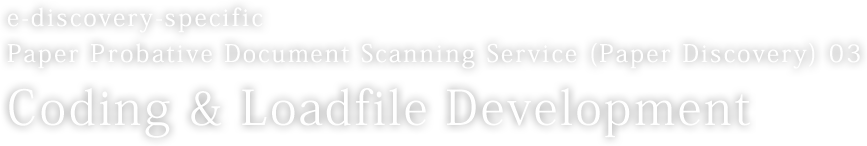 e-discovery-specific Paper Probative Document Scanning Service (Paper Discovery) 03 Coding & Loadfile Development